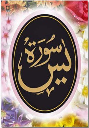 Qur'an - Surah Yaseen (Multi-Color 9 Lines Arabic)