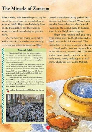 Tell Me About Hajj (SC)